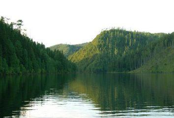 La mer de Krasnoyarsk est un réservoir artificiel. Pêche excitante pour les espèces commerciales