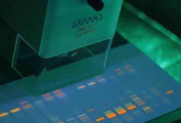 Cromatografia a strato sottile: metodi semplici di analisi complessa