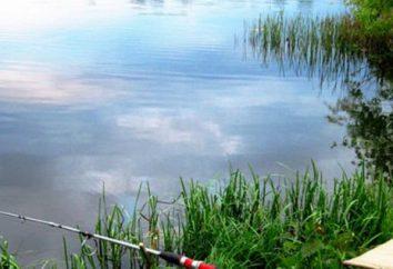 Bonne pêche dans la banlieue: pour le temps libre et passer productive