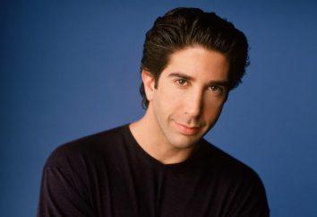 """Ross Geller dalla serie TV """"Friends"""": il personaggio e l'attore"""