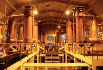 Destillerien: qualitativer Alkohol oder Fälschung?