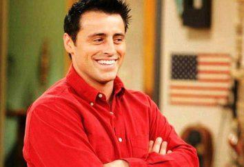 Joey Tribbiani – è possibile immaginare una migliore personaggio comico?