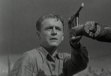 """Specyfikacje """"Mauser K-96."""" Pistolet Mauser C-96 – legendarny palnej"""