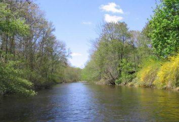 Rivers Caractéristique: paramètres de base