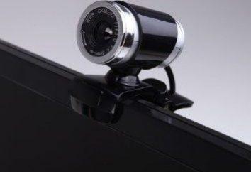 """significa """"Skype"""" não detecta a câmara web: o que fazer?"""