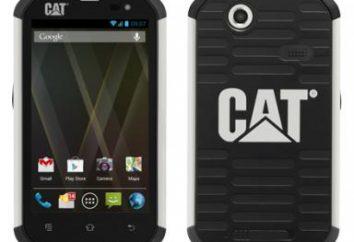 Caterpillar CAT B15: Überprüfung von Modellen, Kundenbewertungen und Experten