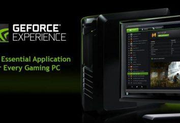 Program optymalizacji gier Nvidia
