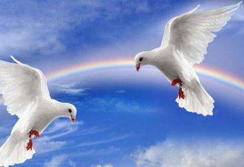 Citações sobre a paz ea guerra. A mensagem escondida nas palavras dos sábios do passado