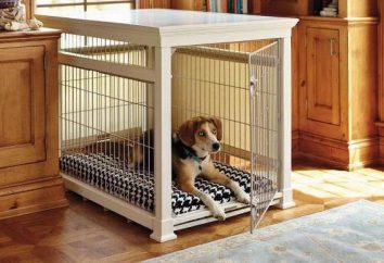 Gabbia per cani in appartamento. Come insegnare ad un cane in un appartamento in una gabbia?
