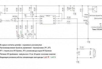 Jakie są schematy mikrokontrolera?