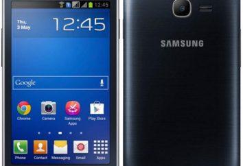 Funkcjonalność i przystępność w jednej osobie: Samsung 7262