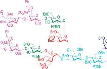 Las propiedades de los hidratos de carbono. Las funciones y propiedades de los hidratos de carbono: mesa