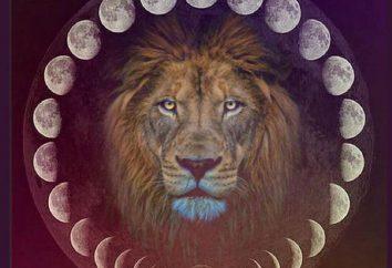 Księżyc w Leo człowiek: cechy, funkcje, kompatybilność