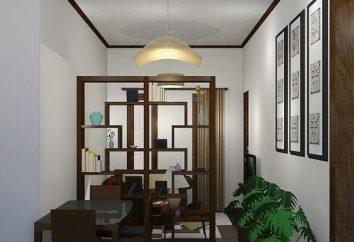 Ściany wewnętrzne własnymi rękami: z jednego pomieszczenia do drugiego