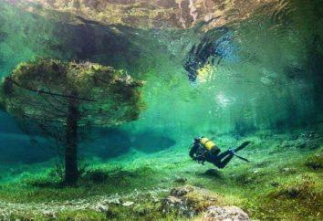 Unique Green Lake: die Unterwasserwelt in der Mitte von Österreich