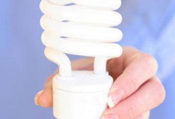 Tipi di lampade a risparmio energetico. La scelta di lampade a risparmio energetico per l'appartamento. Recensioni