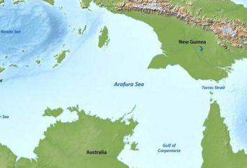 Arafura mare dove? Descrizione, caratteristiche