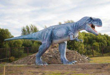 « Dino » – Parc d'attractions pour les enfants