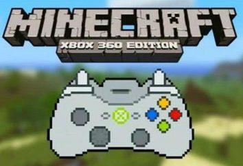 Fragen darüber, wie die Karte in Minecraft installieren? Sie befinden sich hier!