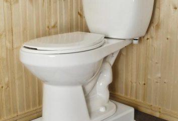 Come si installa la toilette con le proprie mani? alcune sfumature