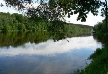 Niemen jest rzeką płynącą przez trzy stany