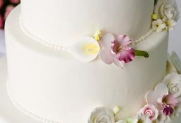 Como decorar o bolo com aroeira: um guia prático