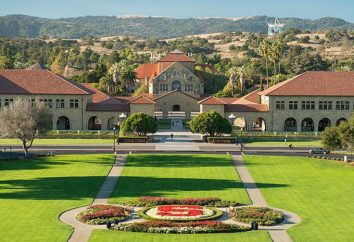 Stanford University: departamenty i adres