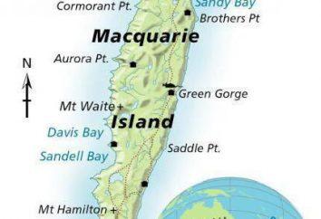 Macquarie – una isla en el Océano Pacífico. Descripción, clima, fotos