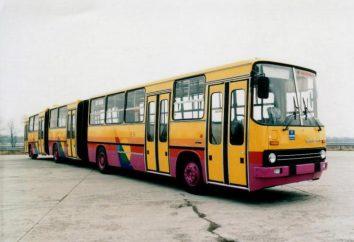 """Bus """"Ikarus-293"""": specyfikacje techniczne i zdjęcia"""