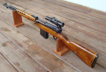 SVT-40 (fucile da cecchino): cliente cacciatori, foto, caratteristiche