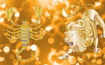 Compatibilità leone femmina e un maschio Scorpion: la regina del Sole e l'eminenza grigia
