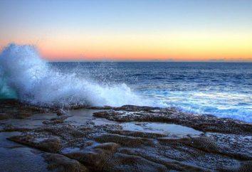 Les vagues – l'illusion de la vision humaine
