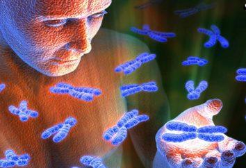 Mutation von Menschen. Chromosomale Mutationen beim Menschen