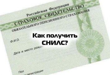 Dónde obtener SNILS un niño en Moscú? Cómo hacer que un niño SNILS