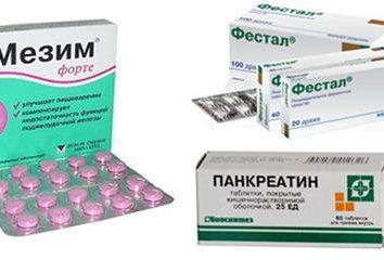 préparations enzymatiques pour améliorer la digestion. Médicaments pour la digestion: les noms des médicaments