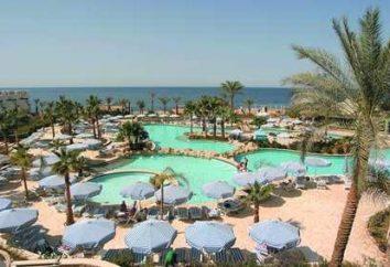 Hilton Sharm Waterfalls Resort 5 – gwarantuje wysoki poziom spokojny wypoczynek