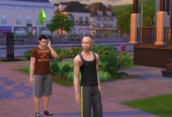 """Come impostare la moda dei """"The Sims 4"""": raccomandazioni"""