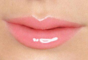 Lip Gloss: comentários. volume de Lip Gloss