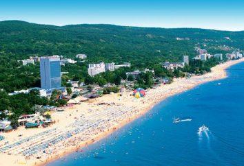 Bay Nizhneimeretinskaya – Sochi paradiso