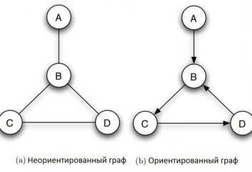 Wykresy informatyki: definicja, typy, zastosowania, przykłady. Teoria wykresów w informatyce