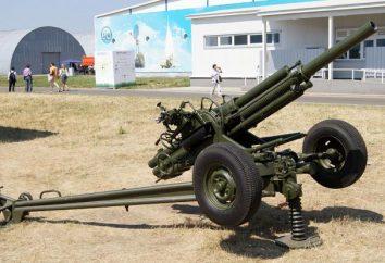 """""""Fiordaliso"""" (82 millimetri di mortaio): caratteristiche, foto"""
