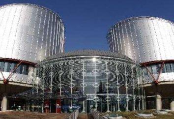 La queja del CEDH: el procedimiento para la presentación de la muestra. Tribunal Europeo de Derechos Humanos