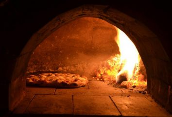 Qual deve ser o forno de pizza? Qual empresa para comprar um forno de pizza? Comentários e conselhos de especialistas