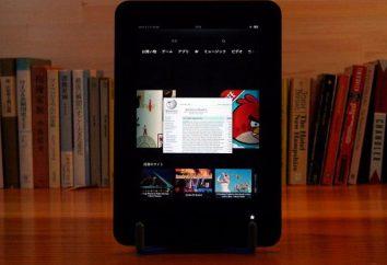 Jak pobrać książki na tablecie: szczegółowe instrukcje