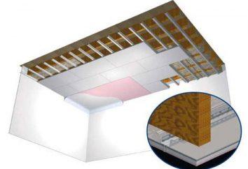 plafond en plaques de plâtre dans la chambre: les caractéristiques
