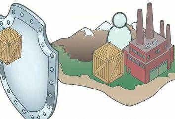 protecionismo. Medidas de protecionismo estado refere-se que?