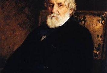 Bazarov Pavel Pietrowiczu: Właściwości porównawcze (tabela). Bazarov i Kirsanow