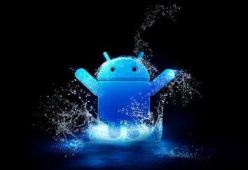 """Jak usunąć aplikację z """"Android"""", bez błędów"""