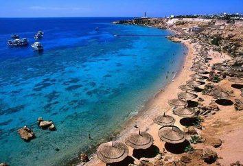 Co Morza w Egipcie? Zbadajmy razem
