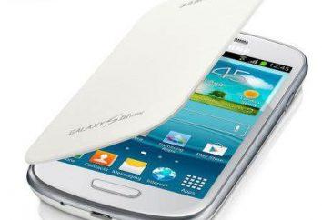 Samsung 8190: especificaciones técnicas y las revisiones